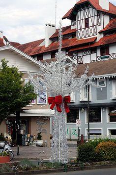Na avenida Borges de Medeiros/ Gramado/Brasil são várias destas árvores com materiais reciclados ( garrafas pet), o bom gosto e politicamente correto juntos para alegria do natal.