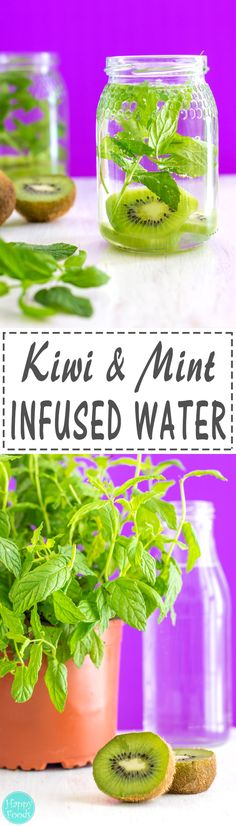 Kiwi and Mint Infused Water Recipe + 5 Tips for perfect Infused Water - Perfect for hydrating on hot summer days! Naturally flavored drink via Healthy Eating Tips, Healthy Nutrition, Clean Eating Recipes, Nutrition Drinks, Infused Water Recipes, Fruit Infused Water, Infused Waters, Yummy Drinks, Healthy Drinks