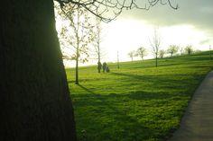 Primrose Hill, London, UK 2012 Rule Britannia, London Calling, Country Roads, Plants, Plant, Planets