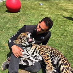 I love this pic of Ma-tzu and Eddie :) you can see the love Eddie has for all of his kids and you can see Ma-tzu has the same love back  #Matzu #RescuedJaguars #SaveJaguars #ItsAllForLove #Love #BeHuman #SaveOurPlanet #SaveHabitat #NotPets #NoSonMascotas #Jaguar #BoycottCircus #Mexico #PropertyOfCielo #Father #Beautiful #Perfect #BlackJaguarWhiteTiger  @blackjaguarwhitetiger  Pic by @catalinarobayo