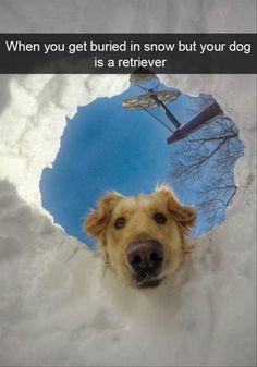 Funny Snapchats (dog edition)