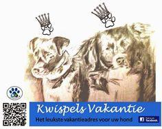Kwispels Vakantie - hondenopvang in huiselijke kring, voor elke hond is een echt thuis: Hondenopvangadres in huiselijke kring Katwijk, gee...