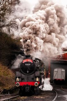75029 The green knight at grosmont (nymr) 2012 - 75029 The green Knight working…