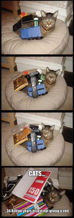 Funny Pictures Of The Day – 46 Pics