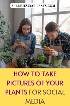 Here are a few helpful tips when it comes to photographing your succulent collection. Find it on this pin! #succulents #indoorgardening #outdoorgardening #gardeningtips #succulentphotography #plantphotography Cacti And Succulents, Planting Succulents, Outdoor Plants, Outdoor Gardens, Succulent Species, Vertical Pallet Garden, Cactus Care, Succulent Care, Simple Backgrounds
