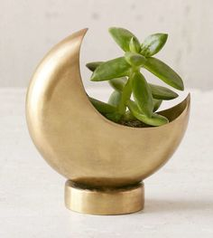 A tiny half-moon planter perfect for housing your favorite succulent. | 35 Celestial Products That Will Light Up Your Life