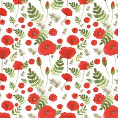 poppy fields by Kasia Rojek (konvalia), via Behance