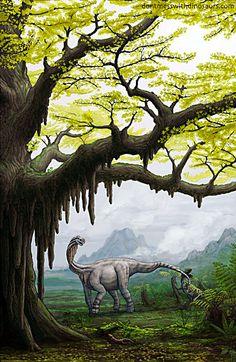 idea of scale of ginko trees