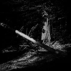 """#exploring #Maine #summer #August #bnw #blackandwhite #wandering #myMaine #landscape #daylight #exploreusa #exploringMaine #exploringAmerica"" Photo taken by @ndoocy on Instagram, pinned via the InstaPin iOS App! http://www.instapinapp.com (09/01/2015)"