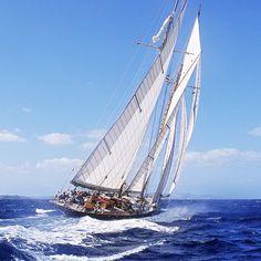 Sail the high seas!