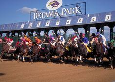Retama Park, Photo Credit: Retama Park