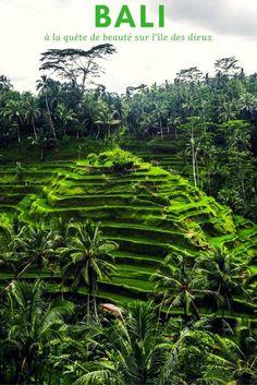 Voyager à Bali: à la quête de la beauté sur l'île des dieux. Photographies et récit de voyage