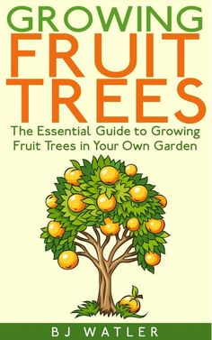 The Essential Guide To Growing Fruit Trees in Your Own Garden