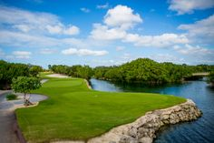 Friday means it's time for another round of golf! This photo shows several beautiful aspects of Mayakoba – the canals, the mangroves, the fantastic bridges, and #ElCamaleón! Does anyone know what hole this is?
