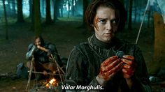 Game Of Thrones Who Does Arya End Up With