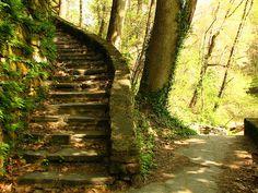 Fairmount Park, Wissahickon Creek, Philadelphia, PA