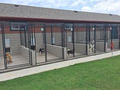 ATTABOY Boarding Kennels Facility #DogKennel