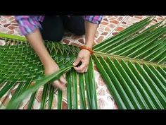 1 million+ Stunning Free Images to Use Anywhere Leaf Crafts, Diy Home Crafts, Diy Arts And Crafts, Tree Crafts, Flax Weaving, Basket Weaving, Weaving Art, Backdrop Decorations, Flower Decorations