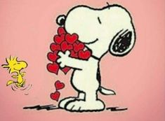 Snoopy Valentine, Valentines Day Funny, Valentines Day Shirts, Snoopy Images, Snoopy Pictures, Snoopy Und Woodstock, Snoopy Love, Snoopy Comics, Peanuts Cartoon