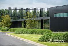 Aangelegde tuinen door tuinonderneming Monbaliu - Bedrijfstuin die een landschap vormt rond modern bedrijfsgebouw