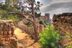 Alanya castel ruins, remember hiking here in 35 degree weather. Travel Tours, Travel Ideas, Alanya Turkey, Castle Ruins, Going On Holiday, Turkey Travel, Abandoned Castles, Ancient Ruins, Antalya