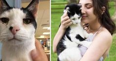 Adopted at 19, Cat Becomes Most Special Prom Date to His Forever Human...