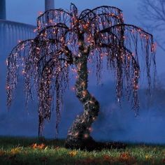 Spooky Halloween Willow Tree - 3-1/2' - Halloween Decorations and Decor - Grandin Road by Grandin Road. $89.00. Stakes and a stand are included, so you can plant your forest indoors, outdoors, or on patios and porches. Wrapped top to trunk in 150 and 250 long-lasting orange lights. Constructed from a weatherproof combination of powdercoated steel and black wire.. Constructed from a weatherproof combination of powdercoated steel and black wire.. Wrapped top to trunk ...