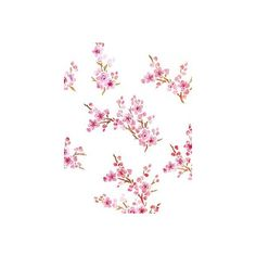 Blossom Stencils Blossom Theme Pack Stencil ($38) ❤ liked on Polyvore featuring backgrounds, flowers, pink, fondos and filler