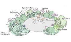 Bildresultat för förslag rabatt perenner halvskugga