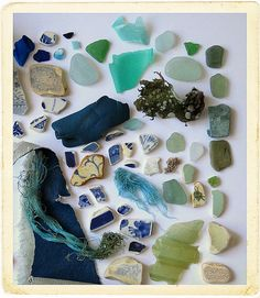 Looks like great day at the Beach! Pottery shards, beach glass, nature finds...