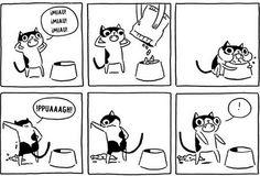 15 cómics que entenderán todos los dueños de gatos.