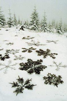 Winter piknik
