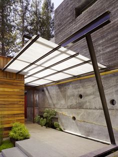 Polycarbonate Roof Panels Entry Contemporary with Bamboo Pole Concrete Walls Elephant Ear Sheltered