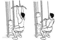 Close Grip Lat Pulldowns / Pull Downs
