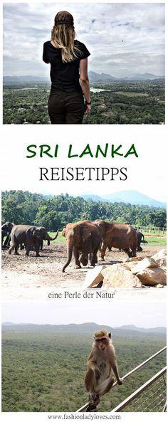 SRI LANKA Reisetipps - Tipps und Infos für deine Reise!