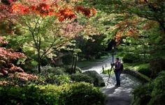 Japanese Garden at the Washington Park Arboretum, Seattle WA by Kathy_14