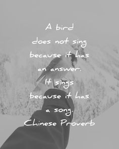 music quotes a bird does not sing because it has an answer it sings because it has a song chinese proverb wisdom quotes