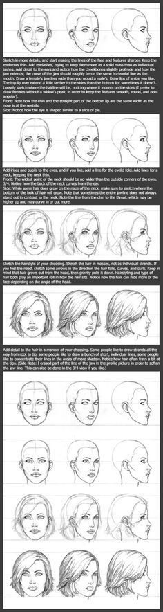 Basic Head Tutorial: Female by timflanagan on DeviantArt