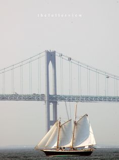 Newport Bridge / Americas cup 2012  photo: david fuller