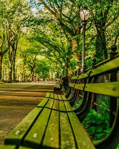 The Mall at Central Park by Mike Gutkin NYC - New York City Feelings