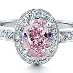 """Ring with an oval fancy vivid pink diamond and pavé white diamonds in platinum"""