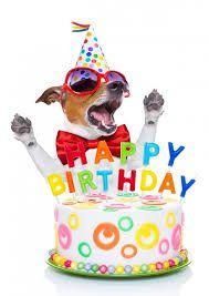 Bilderesultat for happy birthday