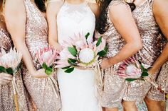 Bride and Bridesmaids | Photo by Catie Coyle Photography
