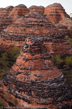 Western Australia, East Kimberley, Purnululu National Park (Bungle Bungles). Layered sandstone domes beside Piccanniny Creek, dawn.