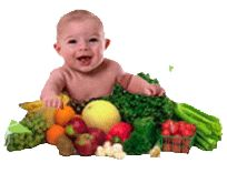 Quick Start Guide to Homemade Baby Food and Recipes
