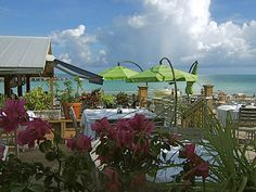 Louie's Backyard / Key West, FL    Best Conch Fritters Anywhere!!