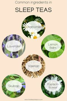 Sleep Tea Blends remedies for anxiety remedies for sleep remedies high blood pressure remedies simple remedies sinus infection Best Tea For Sleep, Sleep Tea, Good Sleep, Sleep Better, Natural Remedies For Insomnia, Insomnia Remedies, Anxiety Remedies, Natural Healing, Natural Sleeping Pills