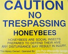 A WARNING CAUTION Honey Bee Hive sign never hurts to have posted for Attorney At Law Lawsuits Lawyer protection Georgia Beekeeper Honey Bee Pollen, Honey Bees, Bee Boxes, Attorney At Law, Bees Knees, Candle Wax, Bee Keeping, It Hurts, Signs