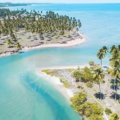 O litoral de Alagoas é maravilhoso! O município de Japaratinga reserva ótimas praias, perfeitas para banho!   +  Foto: @salinasmaragogi Acesse o site e descubra novos destinos!   GuiaViajarMelhor.com  Link na bio  +  #guiaviajarmelhor #viajarmelhor #amoviajar #viajarfazbem #destinos #dicasdeviagem #melhoresdestinos #destinosimperdiveis #fantrip #queroviajarmais #viagem #turistando #turismo #trippics