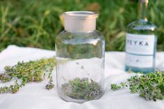Thyme blooms in spring and summer, its tiny flowers offering a sweet scent and delicate flavor. Here's how to turn them into an aromatic, golden liqueur.